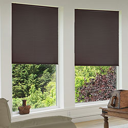 Cordless 1/2 inch Single Cell Blackout Shades - Espresso