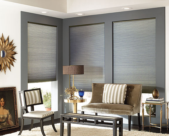 Cordless 3 8 Quot Double Cell Light Filtering Shades Awardblinds