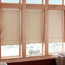 Premium Blackout Vinyl Roller Shades Awardblinds