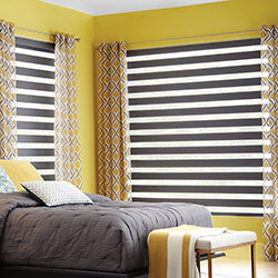 TwinLight Transitional Roller Window Shadings
